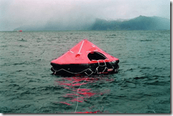 Business foundations for data protection: Where are the Life-RAFTs?